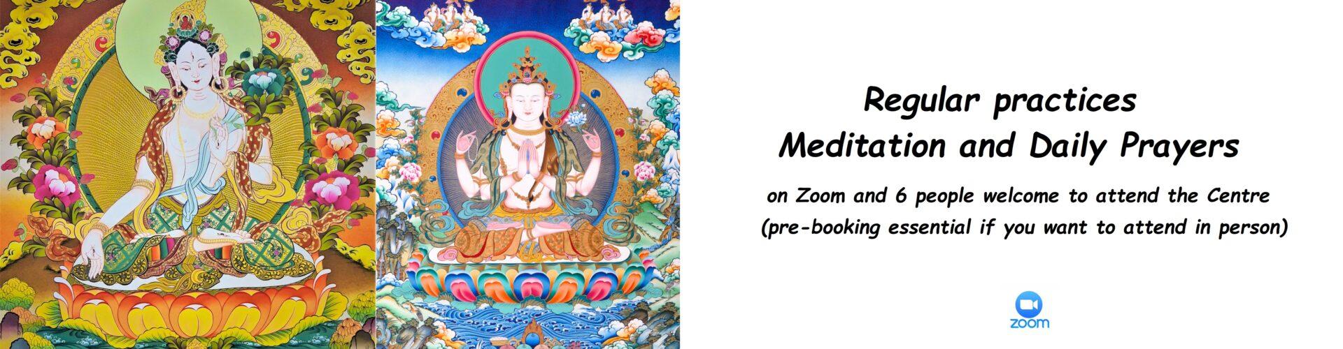 Join Palpung Ireland Livestream Meditation and Protection mantra chant