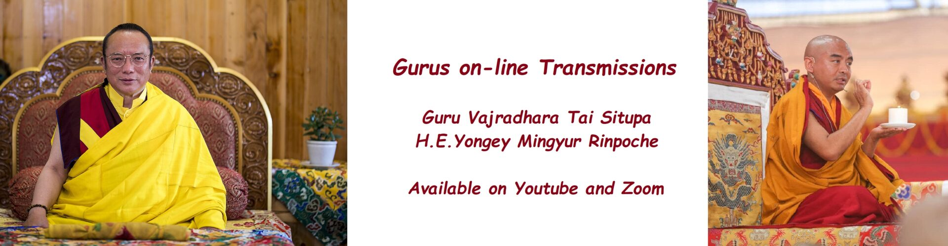 Gurus on-line Transmissions, Tai Situpa Rinpoche and Mingyur Rinpoche